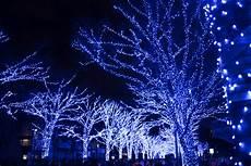 Kostenlose Malvorlagen Weihnachten Japan Hintergrundbilder Japan Nacht Ast Blau Sony