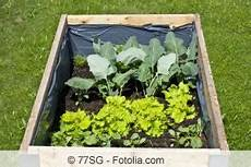 hochbeet richtig bepflanzen hochbeet richtig schichten bef 252 llen und bepflanzen