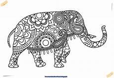 Malvorlagen Mandala Elefant Elefant Mandala Vector Free Free Mandala