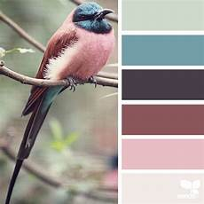 nature inspired color palettes aka design seeds for designers crafters and home decorators
