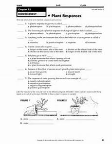 plant responses worksheet for 4th 8th grade lesson planet