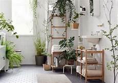 plante verte pour salle de bain des plantes vertes pour une salle de bains tendance