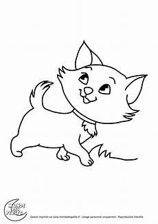 dessin facile chat coloriage de chat facile a dessiner