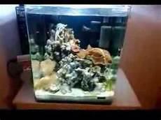 dennerle nano marinus cube complete plus 30l 5 woche