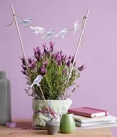 Dekorieren Mit Lavendel - deko ideen mit lavendel living at home