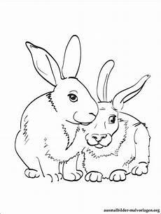 Leo Lausemaus Malvorlagen Free Malvorlagen Kaninchen Kostenlos