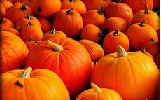 Pumpkin Images Fall Backgrounds For Computer