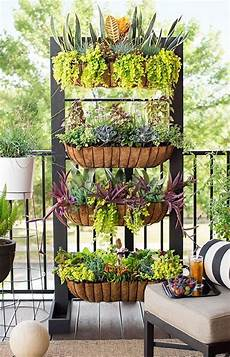 Apartment Patio Container Garden by 1239 Best Container Gardens Images On