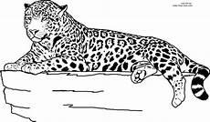 Ausmalbilder Leopard Ausdrucken Leopard Ausmalbilder Drucken
