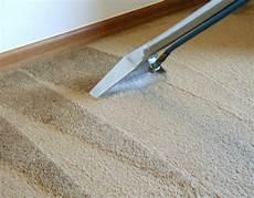 Ideen F 252 R Wollbaum Teppiche Reinigung