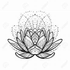 disegni fiore di loto realistic lotus flower drawing at getdrawings free