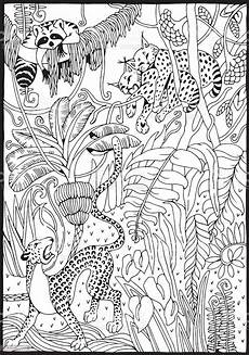 Ausmalbilder Erwachsene Leopard Leopard Lynx And Raccoon In The Junglecoloring Page Stock