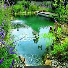 La Piscine Naturelle Dans Le Jardin Avantages Et