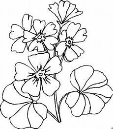 Einfache Malvorlagen Blumen Einfache Kleine Blueten Ausmalbild Malvorlage Blumen