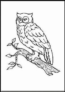 zootiere malvorlagen chords malbuch 58 malvorlagen tiere im zoo ausmalbilder malen ebay