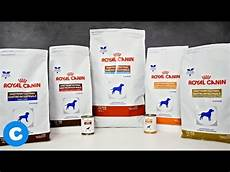 royal canin gastro intestinal low 410g g 252 nstig kaufen