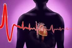 14 Gambar Animasi Jantung Bergerak Info Top