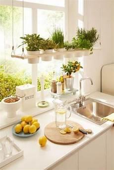 küche deko ideen fensterbank deko ideen die jedes ambiente auffrischen