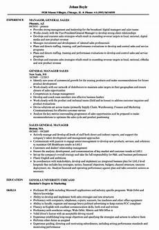 resume sles general general manager sales resume sles velvet