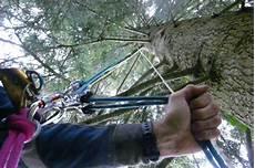 Materiel Elagage Arbre Ma Technique De Grimpe Aux Arbres