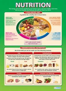 nutrition design technology educational school posters
