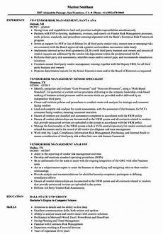 vendor risk management resume sles velvet
