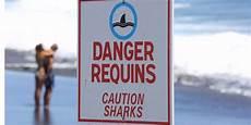 la cinq direct requins 224 la r 233 union reprise des comp 233 titions de surf cinq ans apr 232 s