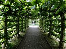 stunning of levens hall garden uk 9 pics i like to waste my time