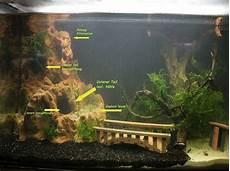 aquarium deko ideen die besten 25 60 liter aquarium ideen auf aquascaping aquarium aquascape und betta