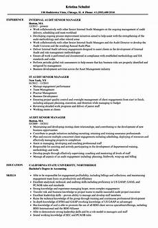 audit senior manager resume sles velvet