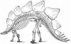 dinosaur bones search dinosaurierbilder
