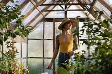 serpenti da tenere in casa 7 piante da tenere in casa per combattere il caldo melarossa