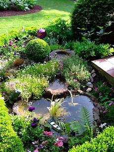 Miniteich An Der Terrasse Front Garden Landscape