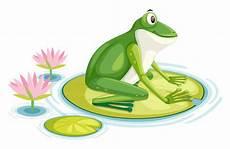 Ausmalbild Frosch Auf Seerosenblatt Ein Frosch Auf Dem Seerosenblatt Der Premium Vektor