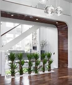 Raumteiler Zum Aufhängen - pflanzen deko ideen flur modernes haus kies wei 223 glas wand