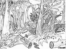 Ausmalbilder Zum Ausdrucken Waldtiere Malvorlagen Fur Kinder Ausmalbilder Waldtiere Kostenlos