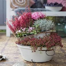 Romantische Pflanzideen F 252 R Balkon Und Terrasse Im Herbst