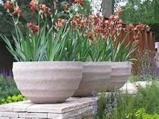 vasi da fiori per esterno semina piante fiore tecniche di giardinaggio semina