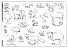 Ausmalbilder Kostenlos Tiere Im Wald Ausmalbilder Wald Und Tiere Kostenlos Zum Ausdrucken