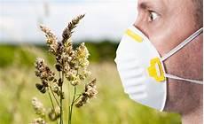 allergia alle graminacee alimenti vietati allergia alle graminacee e reazioni crociate gli alimenti