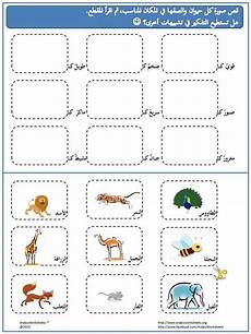 arabic lessons for beginners worksheets 19787 http arabicworksheets learning arabic arabic language learn arabic