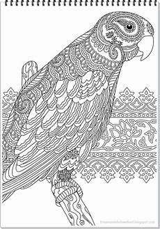 Ausmalbilder Erwachsene Ausdrucken Kostenlos Papagei Mandala Ausmalbilder Zum Ausdrucken Parrot Mandala