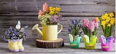 vasi in plastica colorati vasi da esterno di stile e funzionali homehome
