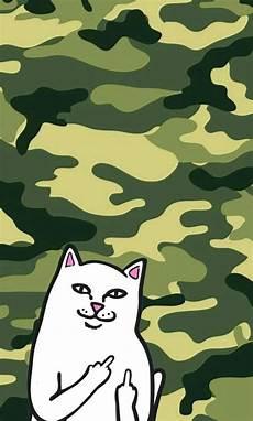 ripndip iphone wallpaper ripndip iphone wallpaper ripndip middle finger cat