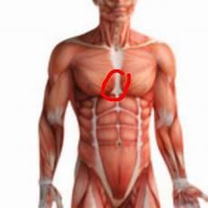 schmerzen in der brust frau hab sehr starke schmerzen zwischen der brust gesundheit