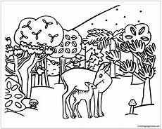 boowa and kwala email forest animals coloring page free