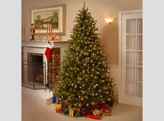 National Tree Co. Lakewood 7.5' Green Spruce Artificial