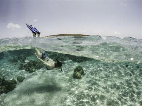 Best Snorkeling Beaches In Aruba