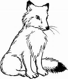 Malvorlagen Tiere Fuchs Pin Auf Coloring Pages