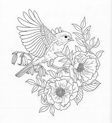 nature colouring pages to print 16387 harmony of nature coloring book pg 26 bird coloring pages coloring pages nature